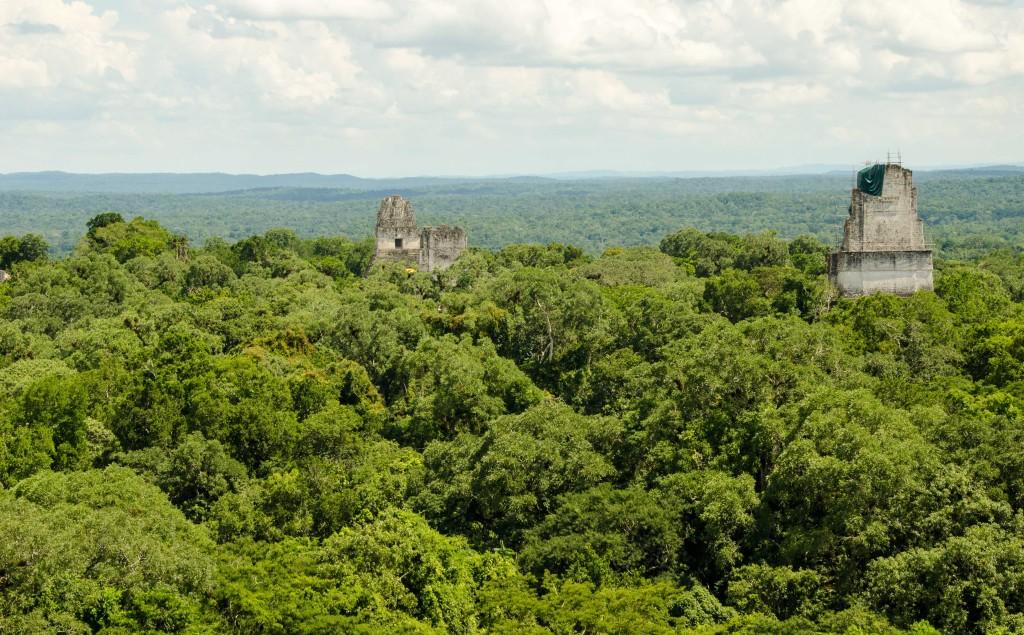 Guatemala's Mayan ruins of Tikal rise dramatically from the jungle canopy