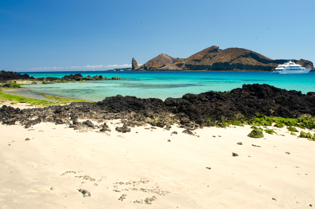 essays on gallapagos islands The galápagos archipelago consists of 13 big islands, 6 small islands, and more than 40 islets santa cruz is the most populated island its main flights between the islands aren't frequent, but the local galápagos airline emetebe (tel 800/481-3163 in the us, or 05/2520-615 wwwemetebecom.