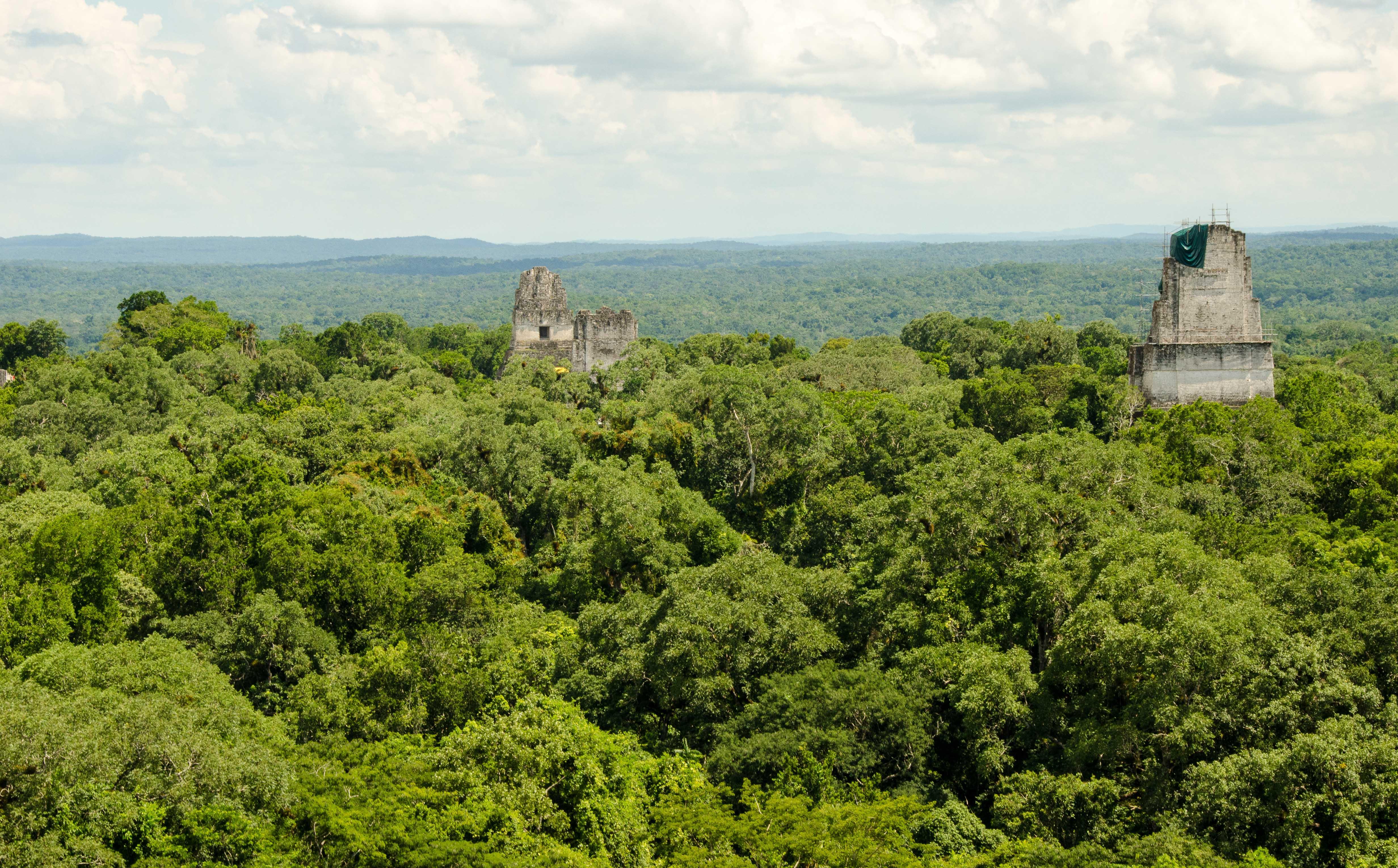 Postcards from… Tikal, Guatemala
